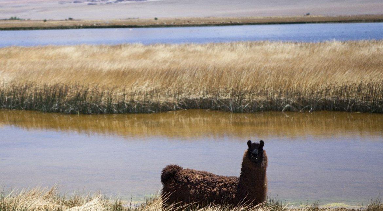 las mejores fotos de las provincias del norte